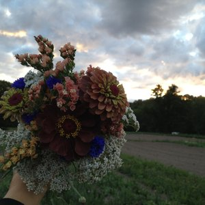 /srv/mudcreek/media/bouquet_sky.JPG